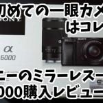 α6000