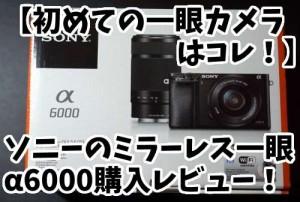 【ミラーレスα6000】赤ちゃん撮影用に単焦点レンズSEL35F18を購入!公園デビューでも使ってみた!
