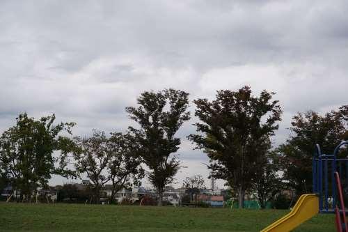 SEL35F18 公園