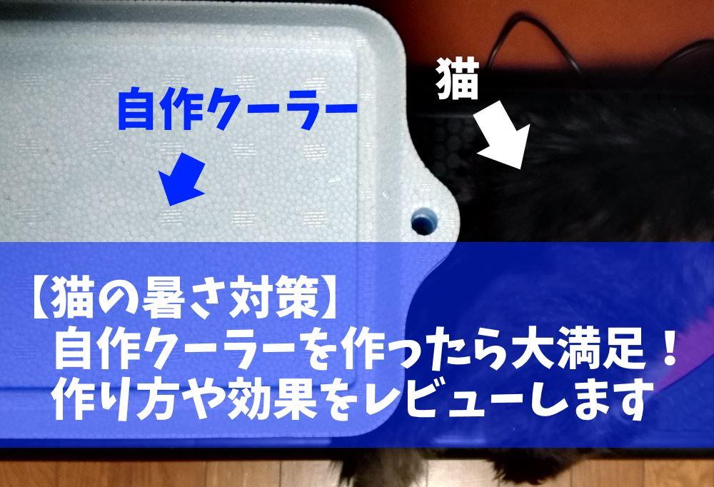 【エアコンなし】猫の暑さ対策で作った自作クーラーに大満足!保冷剤と扇風機で意外と冷えた